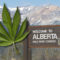 Cannabis Laws in Alberta: What You Need to Know